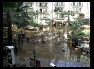 Uno dei giardini interni dell'Opryland Hotel
